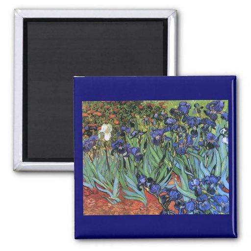 Van Gogh Irises (F608) Vintage Fine Art 2 Inch Square Magnet