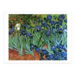 Van Gogh Irises (F608) Vintage Fine Art Post Cards