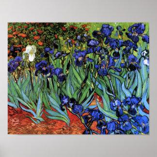 Van Gogh Irises (F608) Vintage Fine Art Poster