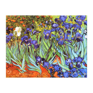 Van Gogh: Irises Gallery Wrapped Canvas