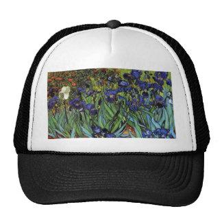 Van Gogh Irises Hat