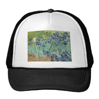 Van Gogh Irises Mesh Hat