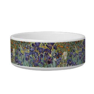 Van Gogh Irises Impressionist Flowers Bowl