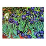 Van Gogh - Irises Post Card