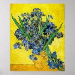 Van Gogh Irises Poster