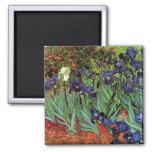 Van Gogh Irises, Vintage Post Impressionism Art 2 Inch Square Magnet