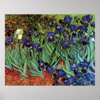Van Gogh Irises, Vintage Post Impressionism Art Posters