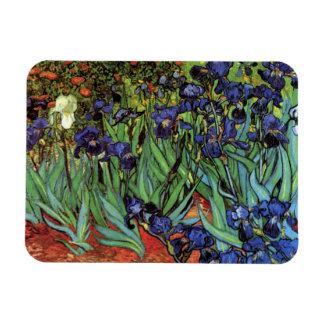 Van Gogh Irises, Vintage Post Impressionism Art Magnets