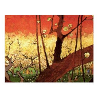 Van Gogh Japanese Flowering Plum Tree, Fine Art Postcard