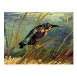 Van Gogh la postal del martín pescador