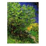 Van Gogh; Lilacs, Vintage Flowers Floral Fine Art Postcard