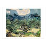Van Gogh - los olivos (1889) Postales