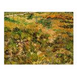 Van Gogh Meadow in the Garden, Saint Paul Hospital Postcard