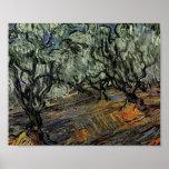 Van Gogh Olive Grove, Bright Blue Sky Poster