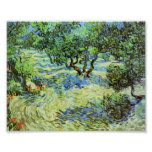 Van Gogh - Olive Grove - Bright Blue Sky Poster
