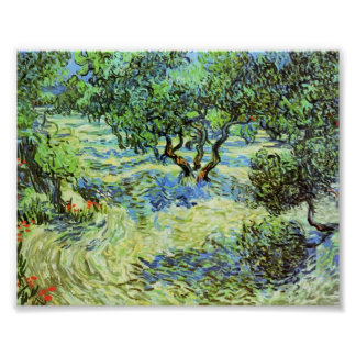 Van Gogh - Olive Grove - Bright Blue Sky Print