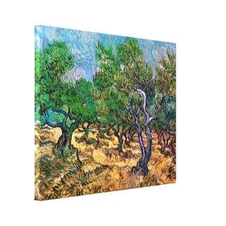 Van Gogh - Olive Grove Canvas Print