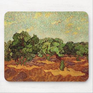 Van Gogh Olive Grove Pale Blue Sky, Fine Art Mouse Pad
