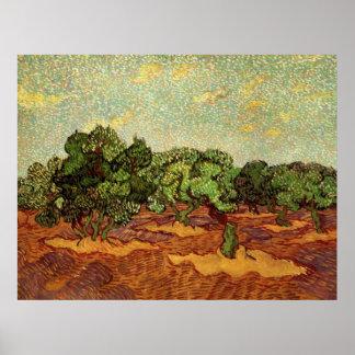 Van Gogh Olive Grove Pale Blue Sky, Fine Art Poster