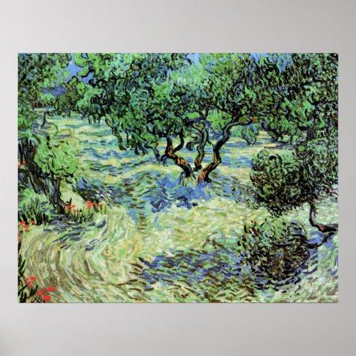 Van Gogh Olive Grove, Vintage Post Impressionism Poster