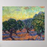 Van Gogh Olive Grove with Orange Sky Posters