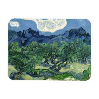 Van Gogh | Olive Trees | 1889 Rectangular Photo Magnet