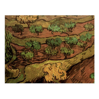Van Gogh Olive Trees Against a Slope of a Hill Postcard