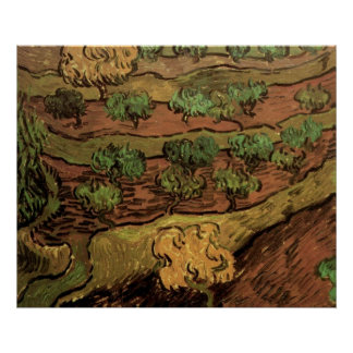 Van Gogh Olive Trees Against a Slope of a Hill Poster