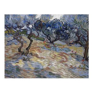Van Gogh Olive Trees (F714) Fine Art Postcard