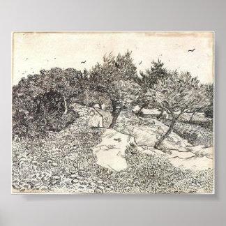 Van Gogh - Olive Trees Poster