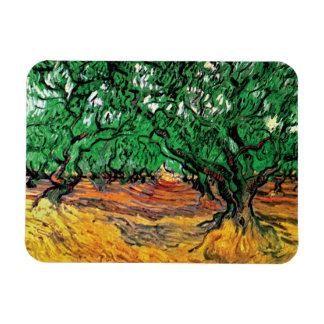 Van Gogh - Olive Trees Rectangular Magnets