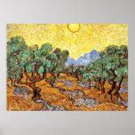 Van Gogh: Olivos con el cielo amarillo y Sun Poster