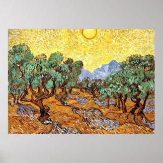 Van Gogh: Olivos con el cielo amarillo y Sun Póster