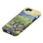 Van Gogh, olivos, impresionismo del poste del vint iPhone 5 Cobertura