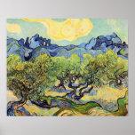 Van Gogh, olivos, impresionismo del poste del vint Poster
