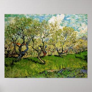 Van Gogh Orchard in Blossom Amsterdam (F511) Print