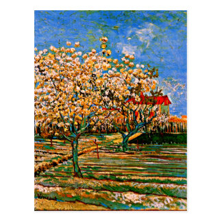 Van Gogh - Orchard in Blossom Postcard