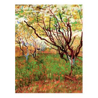 Van Gogh Orchard in Blossom, Vintage Landscape Art Postcard
