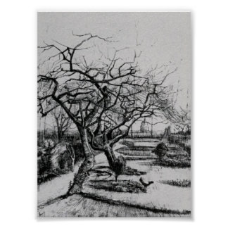 Van Gogh - Parsonage Garden Poster