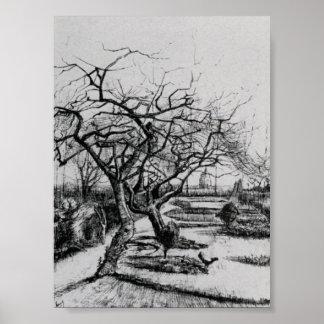 Van Gogh - Parsonage Garden Posters