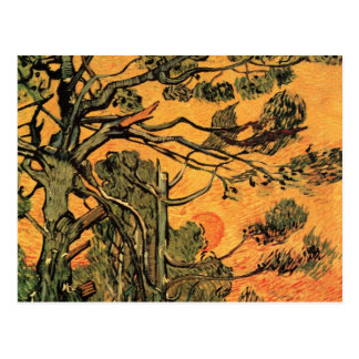 Van Gogh Pine Trees Against Red Sky w Setting Sun Postcards