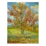 Van Gogh Pink Peach Tree in Blossom, Vintage Art Postcard