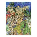 Van Gogh; Ramas florecientes de la castaña Tarjeta Postal