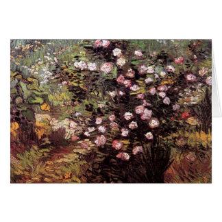 Van Gogh - Rosebush In Blossom Cards