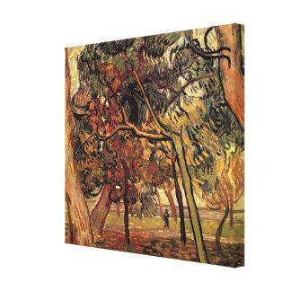 Van Gogh Study of Pine Trees Vintage Impressionism Canvas Print