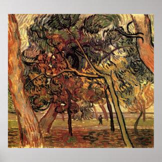 Van Gogh Study of Pine Trees Vintage Impressionism Poster