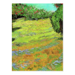 Van Gogh; Sunny Lawn in a Public Park Post Cards