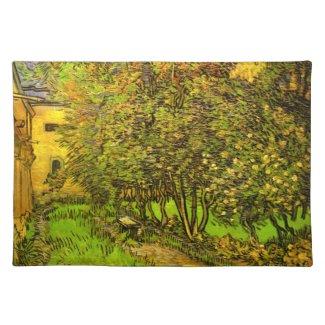 Vincent van Gogh: The Garden of Saint-Paul Hospital