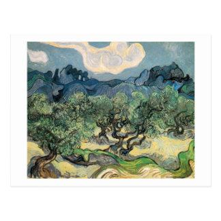 van Gogh - The Olive Trees (1889) Postcard