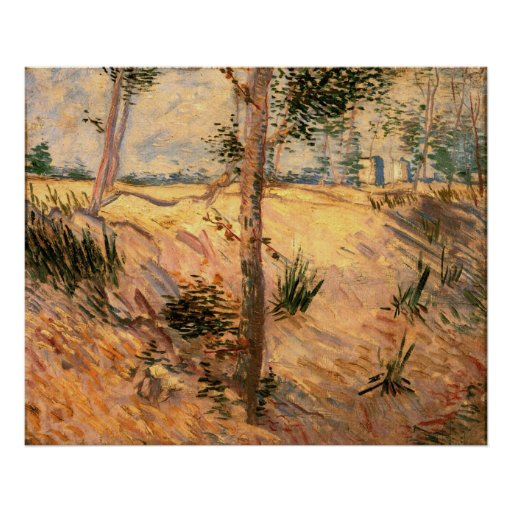 Van Gogh Trees in a Field on a Sunny Day Poster